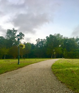 trail at the park