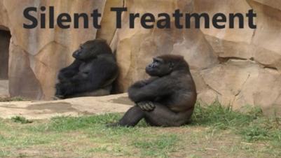 Silent Treatment photo