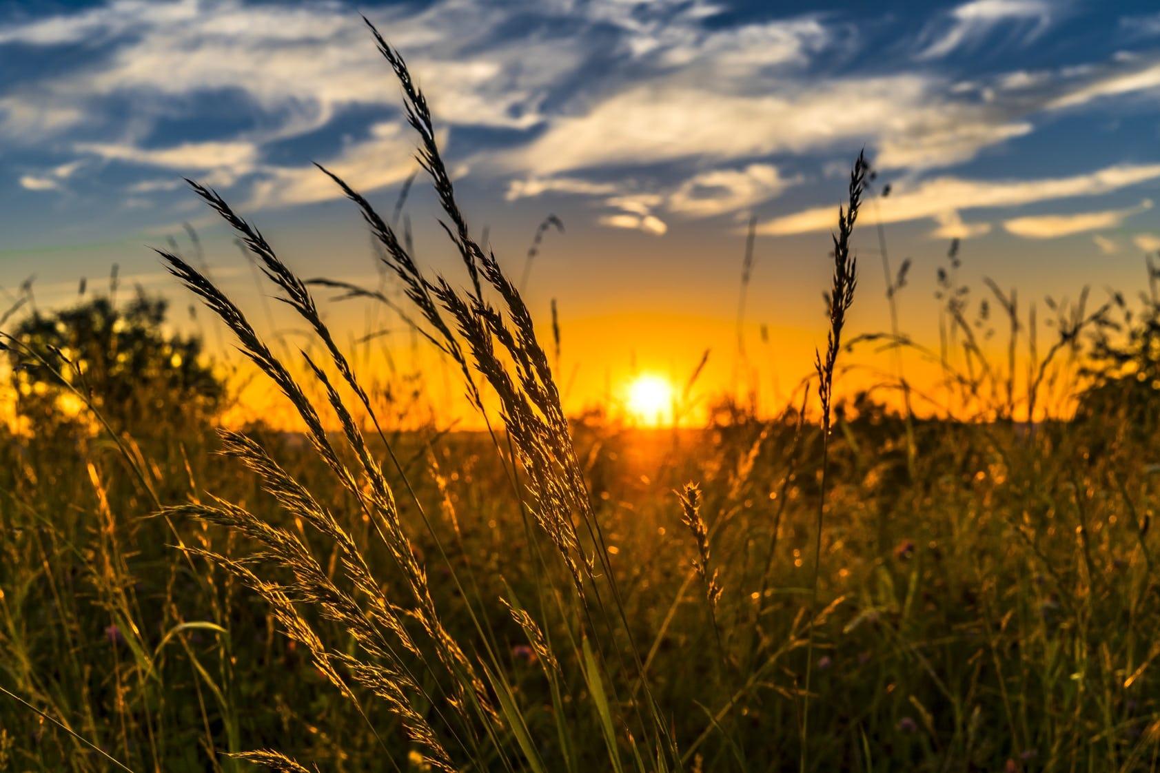 sunrise pic